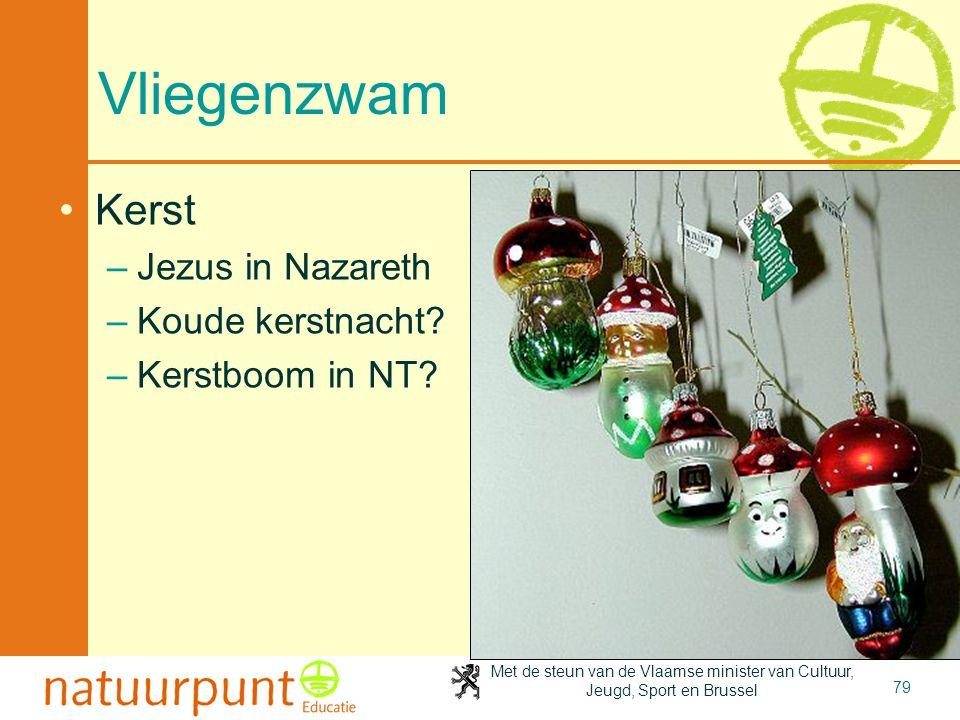 Met de steun van de Vlaamse minister van Cultuur, Jeugd, Sport en Brussel 79 Vliegenzwam •Kerst –Jezus in Nazareth –Koude kerstnacht? –Kerstboom in NT
