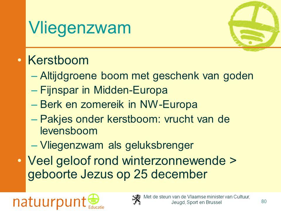 Met de steun van de Vlaamse minister van Cultuur, Jeugd, Sport en Brussel 80 Vliegenzwam •Kerstboom –Altijdgroene boom met geschenk van goden –Fijnspa