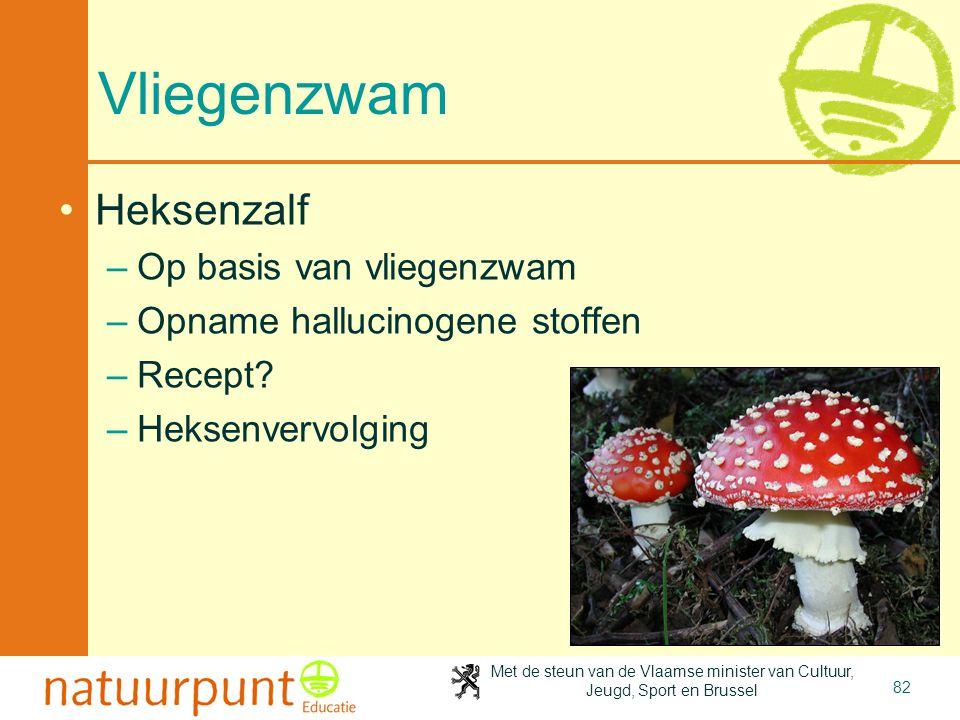 Met de steun van de Vlaamse minister van Cultuur, Jeugd, Sport en Brussel 82 Vliegenzwam •Heksenzalf –Op basis van vliegenzwam –Opname hallucinogene s