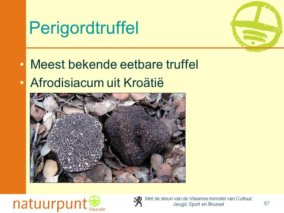 Met de steun van de Vlaamse minister van Cultuur, Jeugd, Sport en Brussel 87 Perigordtruffel •Meest bekende eetbare truffel •Afrodisiacum uit Kroätië