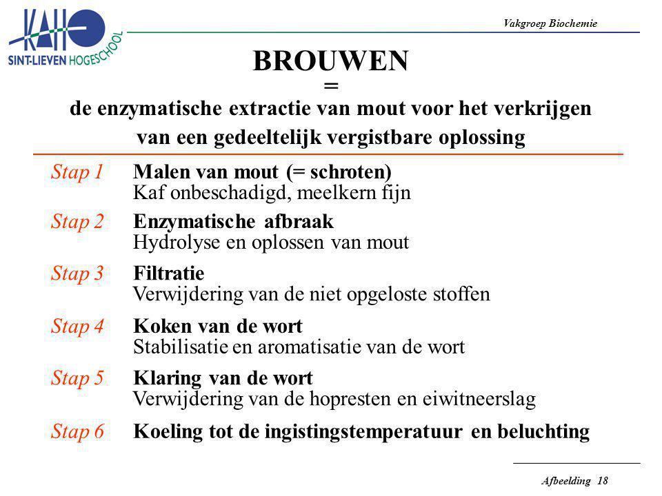 Vakgroep Biochemie Afbeelding 18 BROUWEN = de enzymatische extractie van mout voor het verkrijgen van een gedeeltelijk vergistbare oplossing Stap 1 Ma