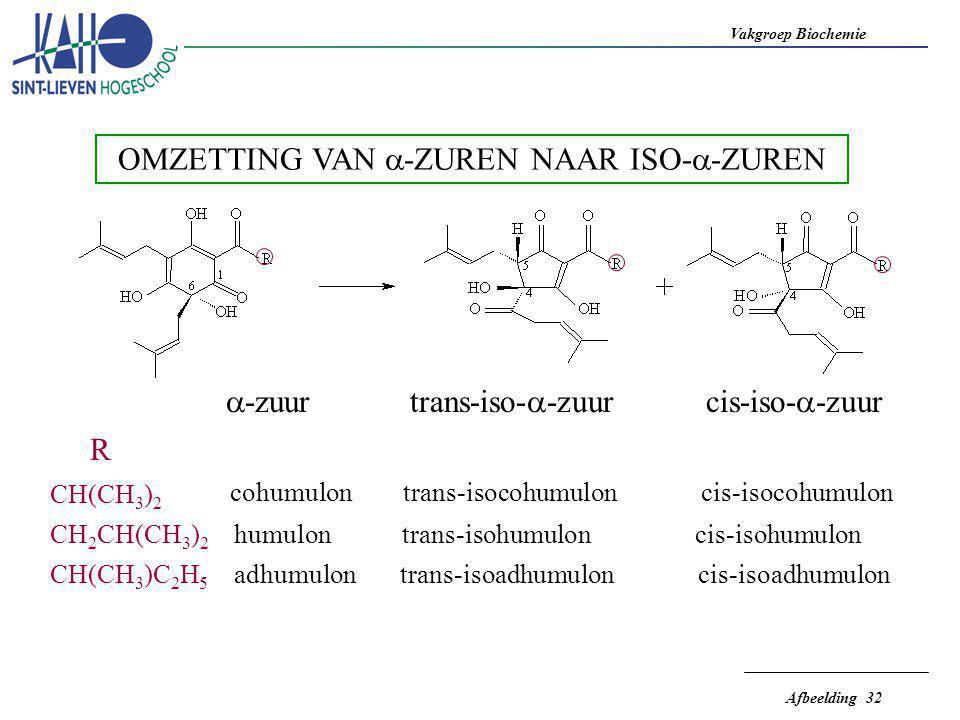 Vakgroep Biochemie Afbeelding 32 OMZETTING VAN  -ZUREN NAAR ISO-  -ZUREN  -zuurtrans-iso-  -zuurcis-iso-  -zuur R CH(CH 3 ) 2 cohumulon trans-iso