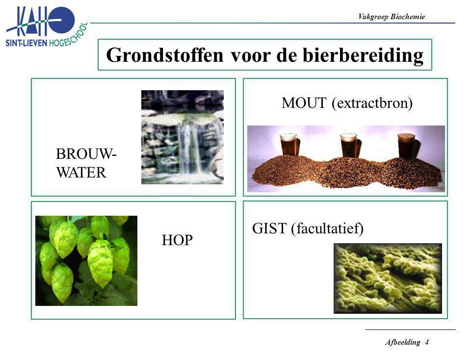 Vakgroep Biochemie Afbeelding 4 Grondstoffen voor de bierbereiding BROUW- WATER MOUT (extractbron) HOP GIST (facultatief)
