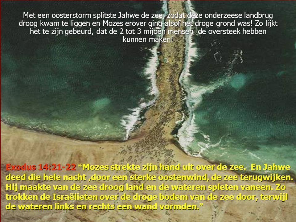 Bij een onderzoek met de dieptesonar, ontdekte Wyatt een onderzeese 'landbrug' precies tussen het strand van Nuweiba en de kust van Saoedi- Arabië