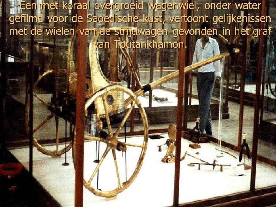 Van 1987 heeft Wyatt drie wielen met vier spaken gevonden, van vergulde strijdwagens. Koraal groeit niet op goud, waardoor de specifieke vorm van de w