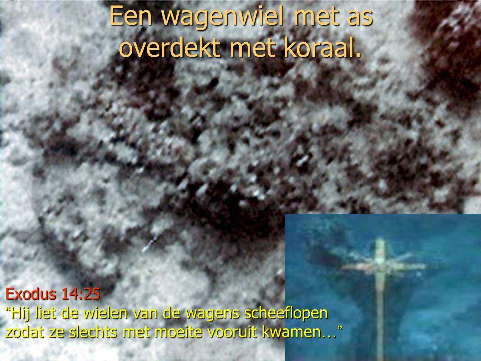 Een met koraal overgroeid wagenwiel, onder water gefilmd voor de Saoedische kust, vertoont gelijkenissen met de wielen van de strijdwagen gevonden in