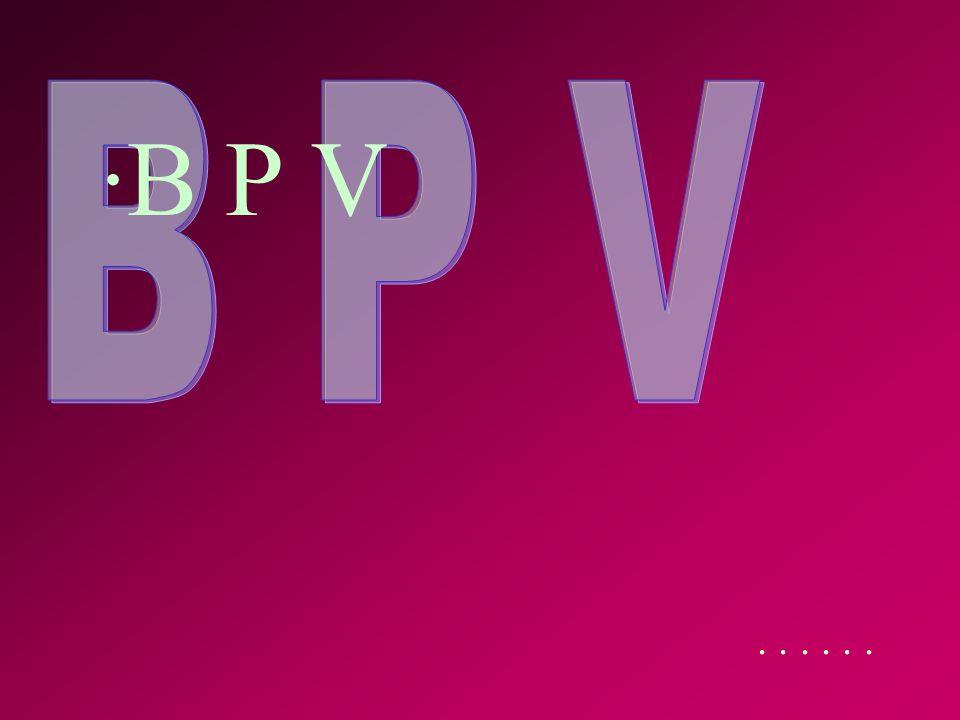 ... ·B P V