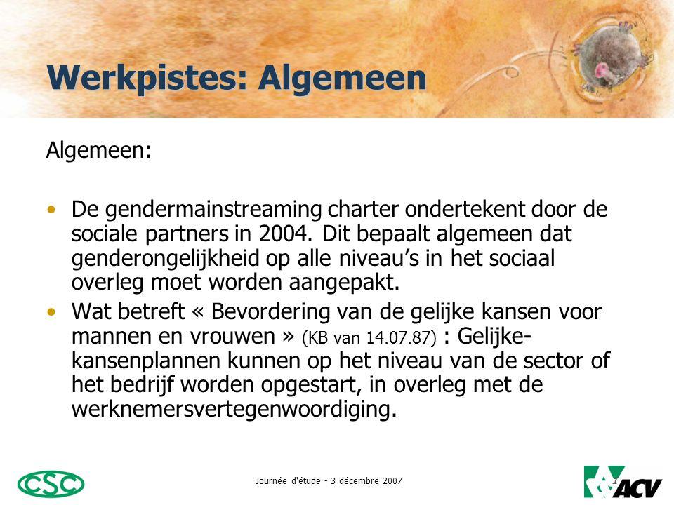 Journée d étude - 3 décembre 20072 Werkpistes: Algemeen •Gelijke-kansenplannen:  Vergelijkende analyse van de situatie van mannen en vrouwen in het bedrijf/organisatie.