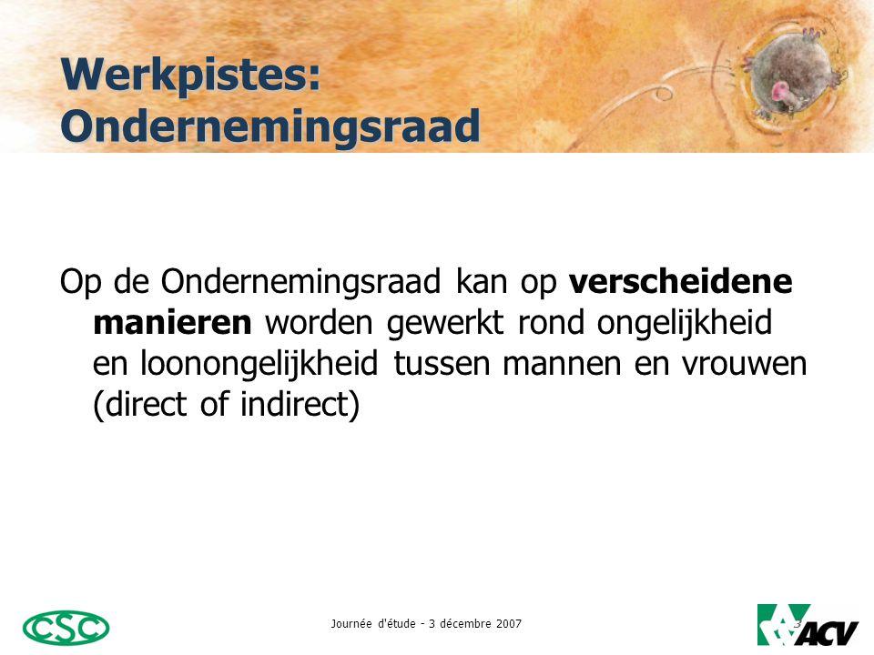 Journée d étude - 3 décembre 20073 Werkpistes: Ondernemingsraad Op de Ondernemingsraad kan op verscheidene manieren worden gewerkt rond ongelijkheid en loonongelijkheid tussen mannen en vrouwen (direct of indirect)
