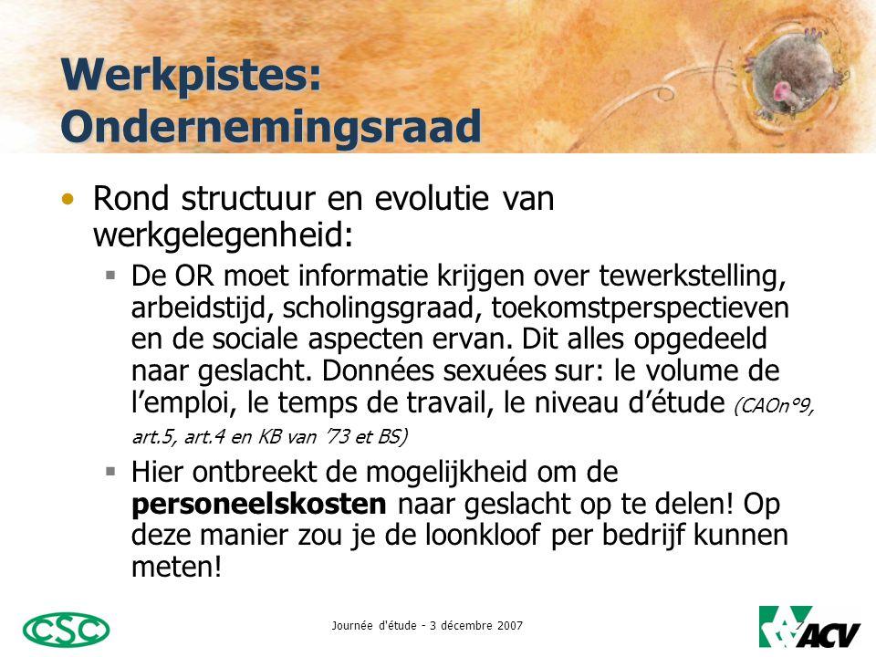 Journée d étude - 3 décembre 20078 Werkpistes: Ondernemingsraad •Rond vorming, toegang en deelname aan vorming en herinschakeling:  Ook hier moet de werkgever voor de OR informatie opgedeeld naar geslacht voorzien.