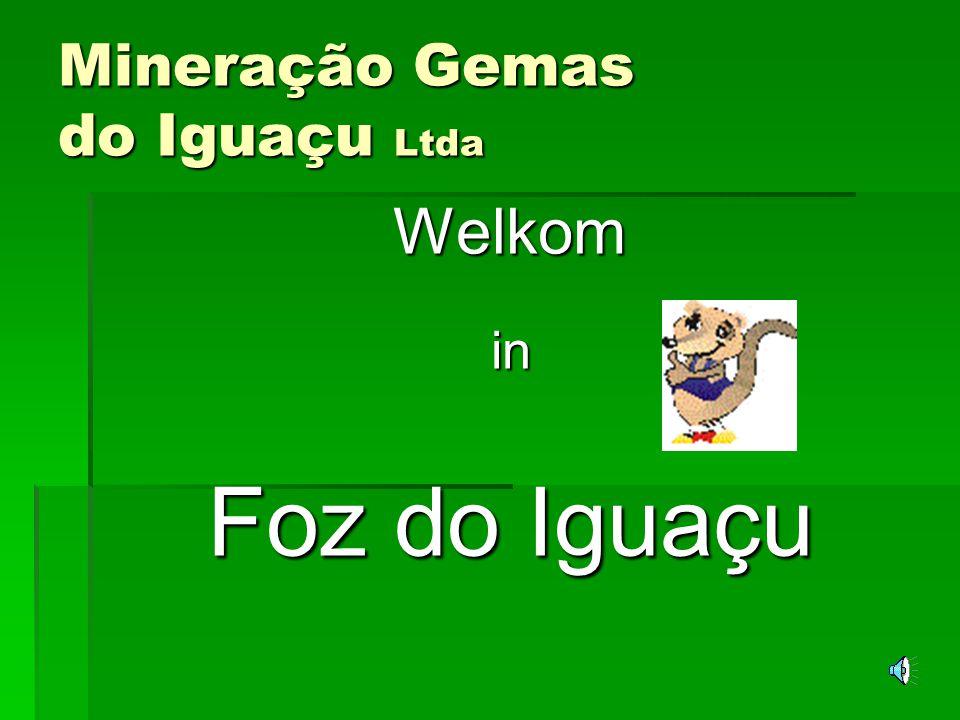 Mineração Gemas do Iguaçu Ltda FFFFoz do Iguaçu is gelegen in het uiterste Westen van de staat Paraná, op de grens van Brazilië met Argentinië en Paraguay.