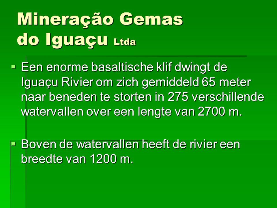 EEEEen enorme basaltische klif dwingt de Iguaçu Rivier om zich gemiddeld 65 meter naar beneden te storten in 275 verschillende watervallen over ee