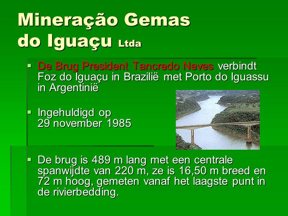 DDDDe Brug President Tancredo Neves verbindt Foz do Iguaçu in Brazilië met Porto do Iguassu in Argentinië IIIIngehuldigd op 29 november 1985 