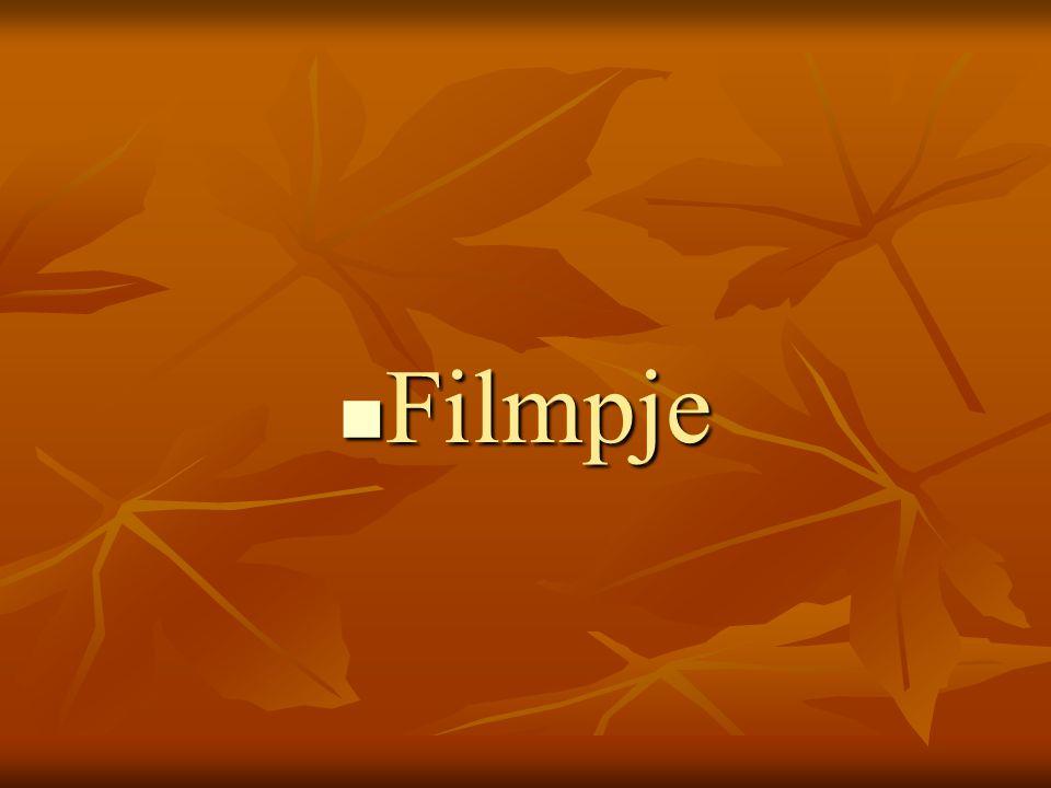 FFFFilmpje