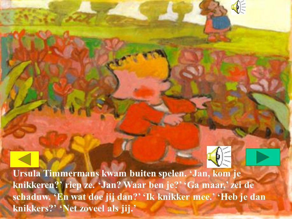 'Meer knikkers dan de schaduw van Ursula Timmermans?' 'De schaduw van Ursula Timmermans heeft meer knikkers dan ik.' 'Ja, Ursula Timmermans zelf heeft altijd meer knikkers dan ik,' zuchtte Jan.