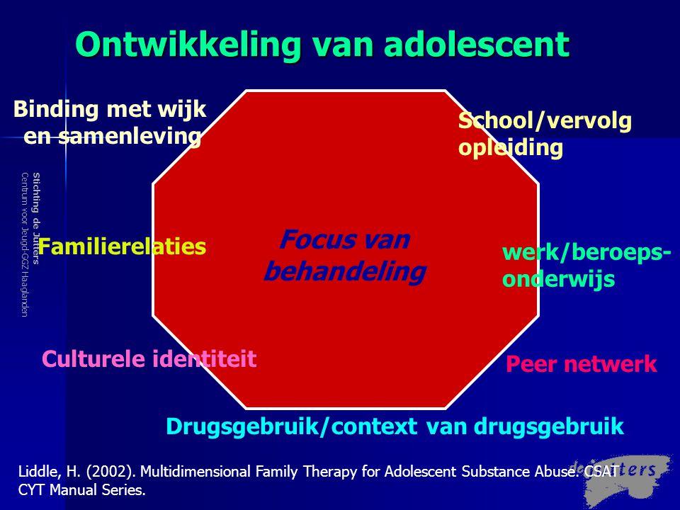 Stichting de JuttersCentrum voor Jeugd-GGZ Haaglanden Risico en Protectieve Factoren School Familie/gezin Peers Individu Samenleving en buurt
