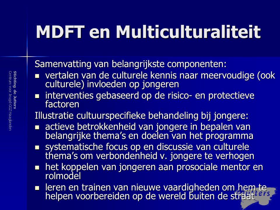 Stichting de JuttersCentrum voor Jeugd-GGZ Haaglanden MDFT en Multiculturaliteit Samenvatting van belangrijkste componenten:  vertalen van de culture