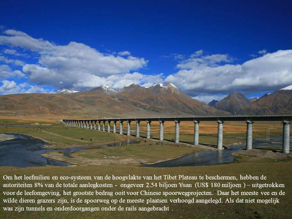 Om het leefmilieu en eco-systeem van de hoogvlakte van het Tibet Plateau te beschermen, hebben de autoriteiten 8% van de totale aanlegkosten - ongeveer 2.54 biljoen Yuan (US$ 180 miljoen ) – uitgetrokken voor de leefomgeving, het grootste bedrag ooit voor Chinese spoorwegprojecten.