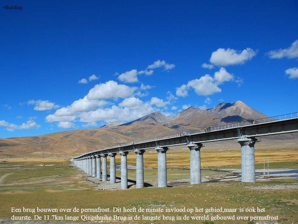 •Building Een brug bouwen over de permafrost.