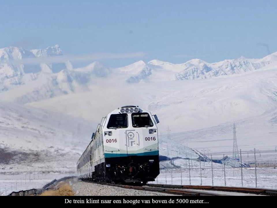 De trein klimt naar een hoogte van boven de 5000 meter....