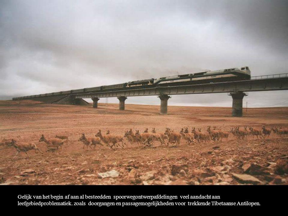 Gelijk van het begin af aan al besteedden spoorwegontwerpafdelingen veel aandacht aan leefgebiedproblematiek.