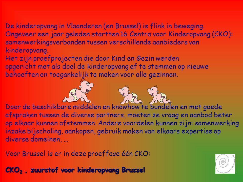 De kinderopvang in Vlaanderen (en Brussel) is flink in beweging. Ongeveer een jaar geleden startten 16 Centra voor Kinderopvang (CKO): samenwerkingsve
