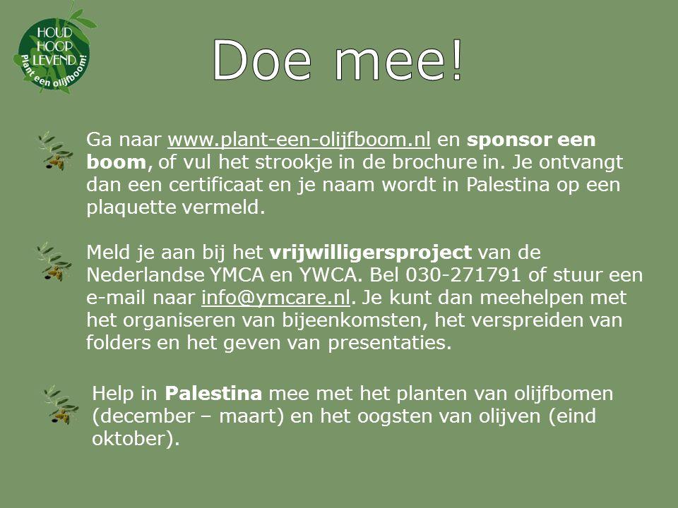 Voor meer informatie: zie www.plant-een-olijfboom.nl.
