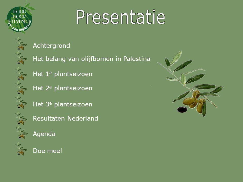 Achtergrond Het belang van olijfbomen in Palestina Het 1 e plantseizoen Het 2 e plantseizoen Het 3 e plantseizoen Resultaten Nederland Doe mee.