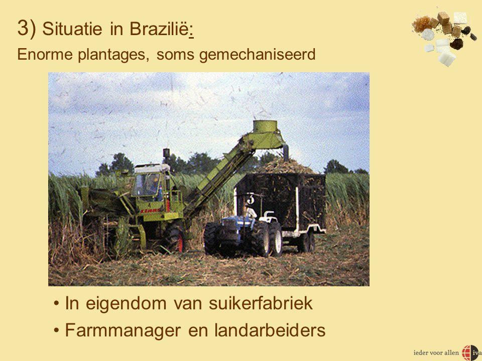 3) Situatie in Brazilië: Enorme plantages, soms gemechaniseerd • In eigendom van suikerfabriek • Farmmanager en landarbeiders