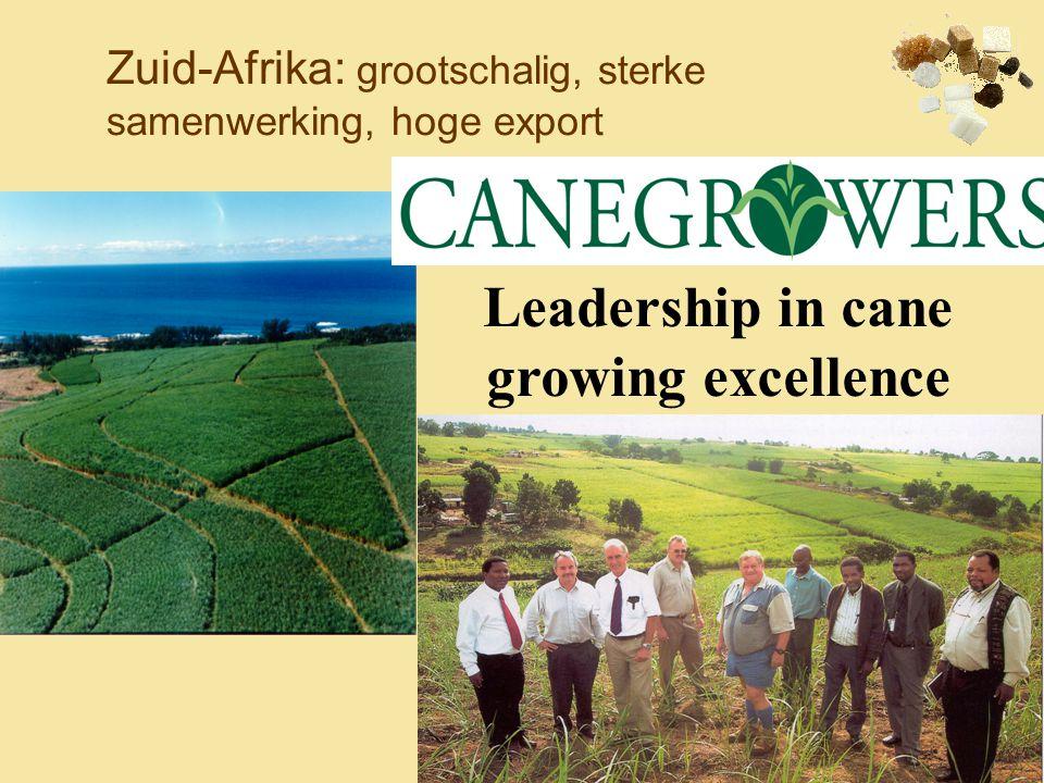 Zuid-Afrika: grootschalig, sterke samenwerking, hoge export Leadership in cane growing excellence