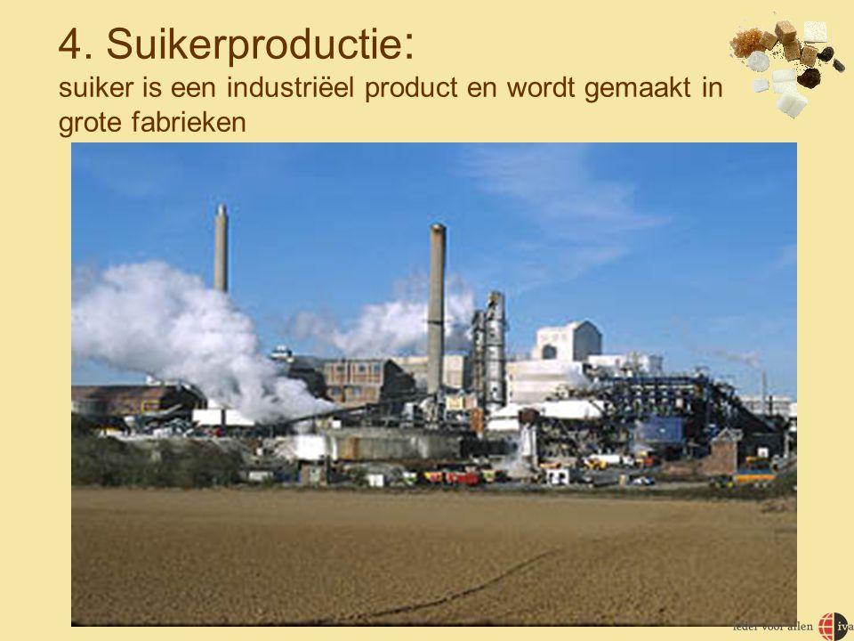 4. Suikerproductie : suiker is een industriëel product en wordt gemaakt in grote fabrieken