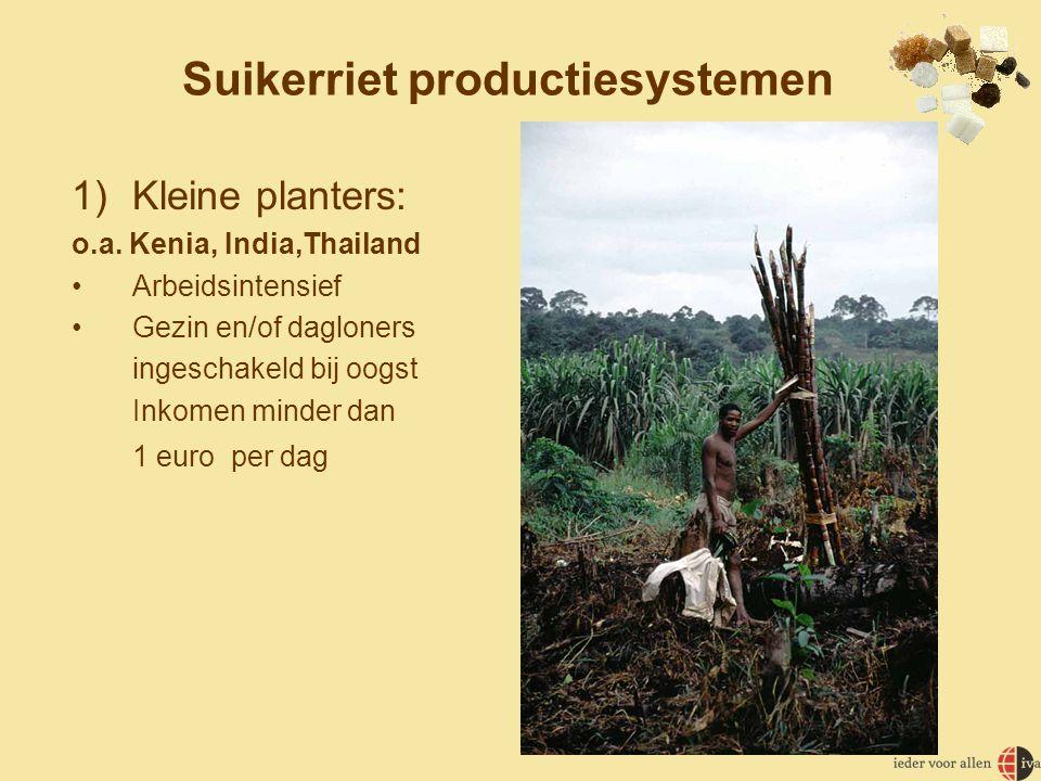 2) Grote landbouwbedrijven o.a.