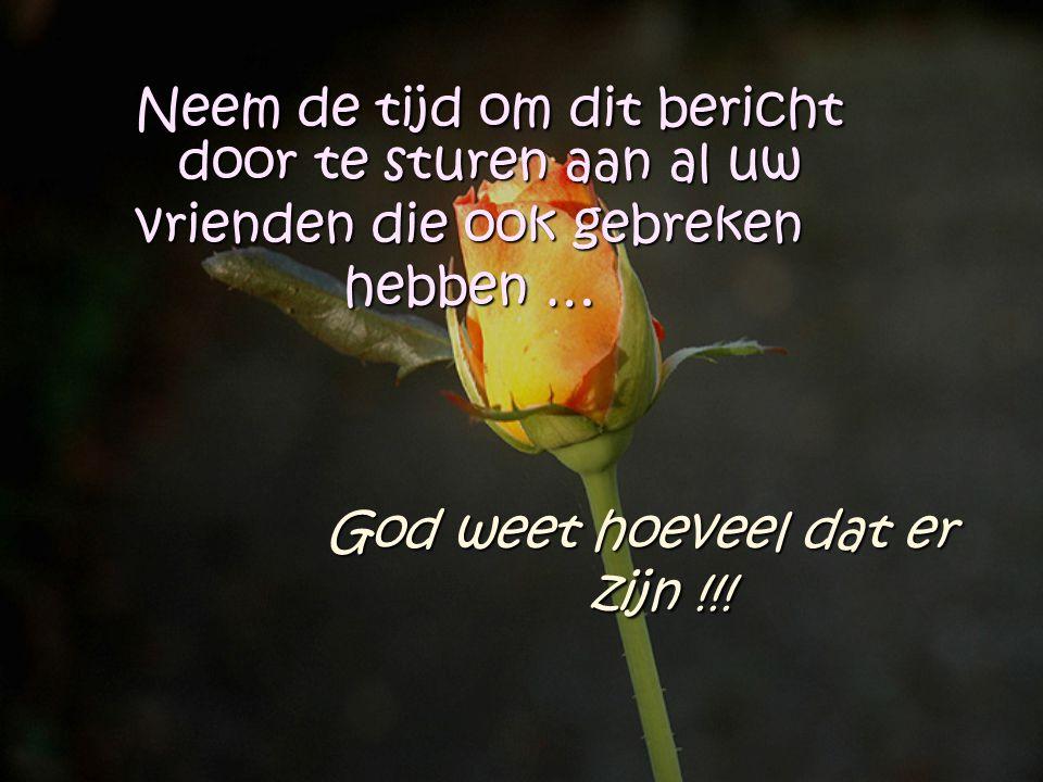 Ik wens al mijn onvolmaakte vrienden… Een prachtige en zonnige dag…. En denk eraan…..ruik de heerlijke geur van de bloemen aan uw zijde van het pad.