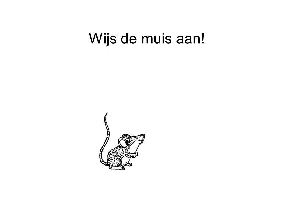 Wijs de muis aan!