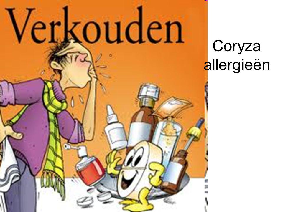 Coryza allergieën