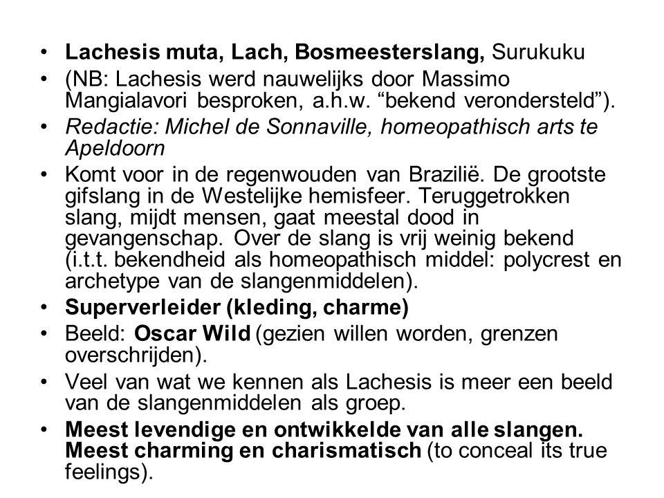 """•Lachesis muta, Lach, Bosmeesterslang, Surukuku •(NB: Lachesis werd nauwelijks door Massimo Mangialavori besproken, a.h.w. """"bekend verondersteld""""). •R"""