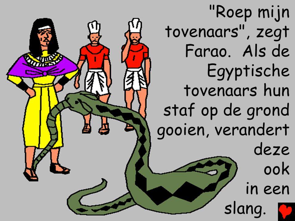 Roep mijn tovenaars , zegt Farao.