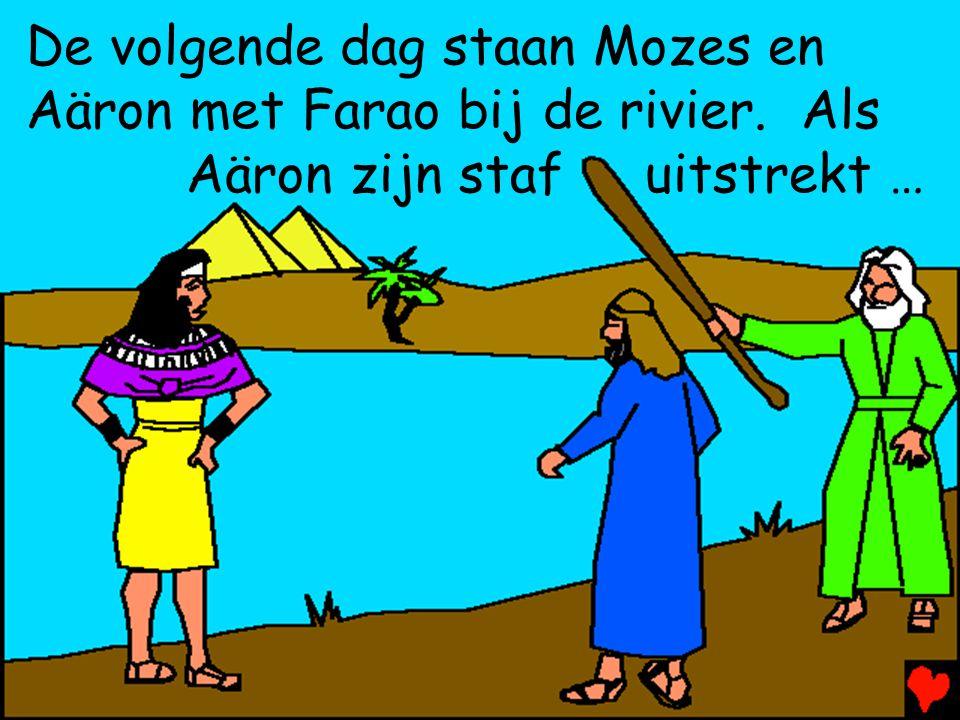 De volgende dag staan Mozes en Aäron met Farao bij de rivier. Als Aäron zijn staf uitstrekt …