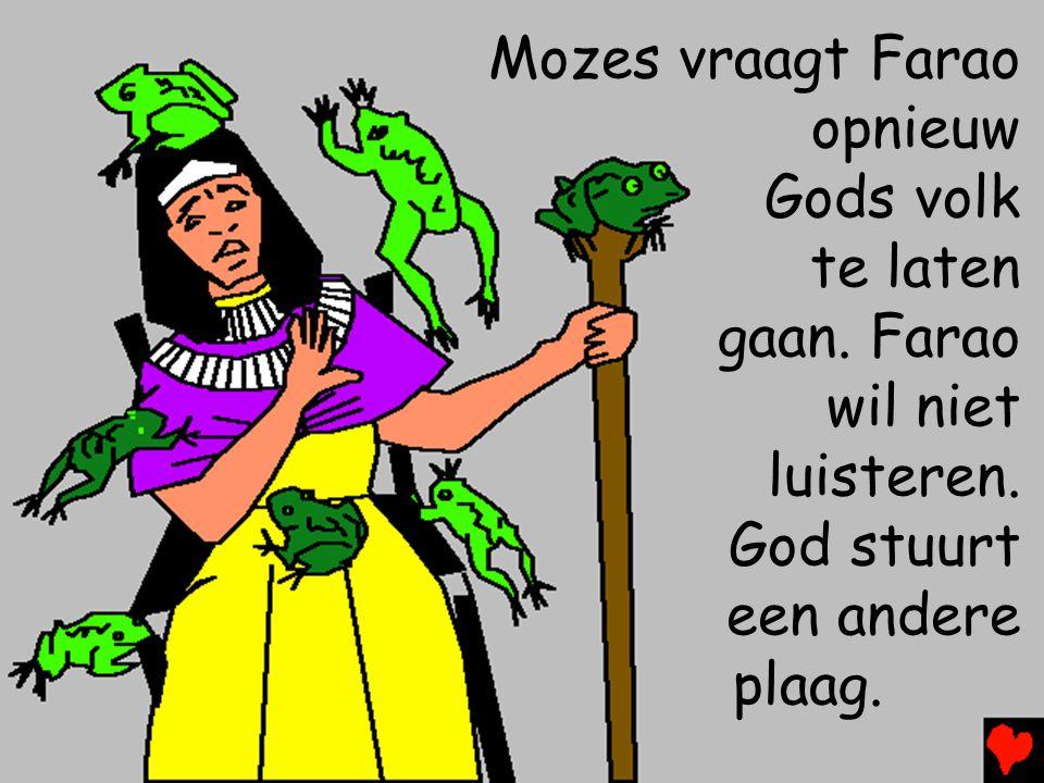 Mozes vraagt Farao opnieuw Gods volk te laten gaan. Farao wil niet luisteren. God stuurt een andere plaag.