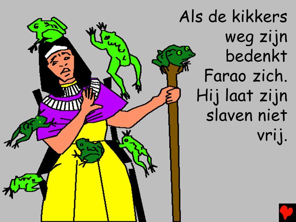 Als de kikkers weg zijn bedenkt Farao zich. Hij laat zijn slaven niet vrij.