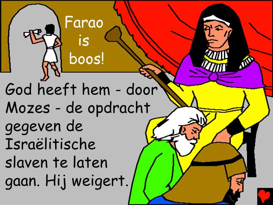 Farao is boos! God heeft hem - door Mozes - de opdracht gegeven de Israëlitische slaven te laten gaan. Hij weigert.