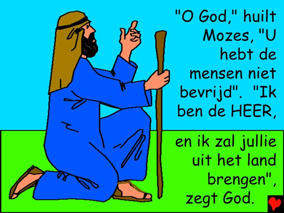 Dan stuurt God Mozes en Aäron terug naar Farao. Farao vraagt de …