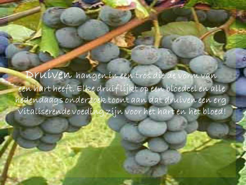 Druiven hangen in een tros die de vorm van een hart heeft.