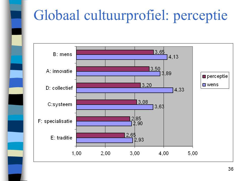 36 Globaal cultuurprofiel: perceptie