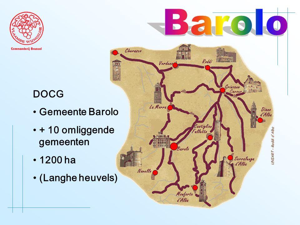 DOCG • Gemeente Barolo • + 10 omliggende gemeenten • 1200 ha • (Langhe heuvels)