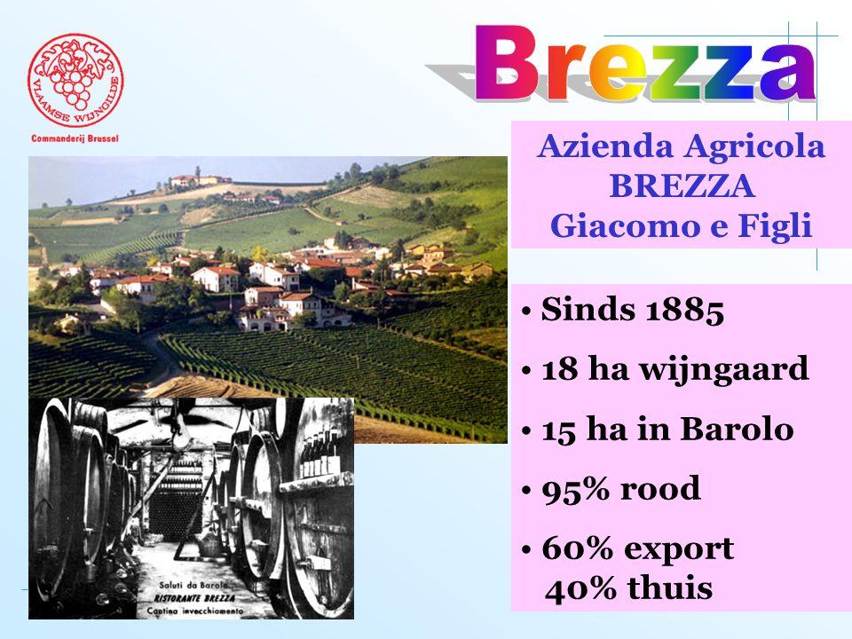 Azienda Agricola BREZZA Giacomo e Figli • Sinds 1885 • 18 ha wijngaard • 15 ha in Barolo • 95% rood • 60% export 40% thuis