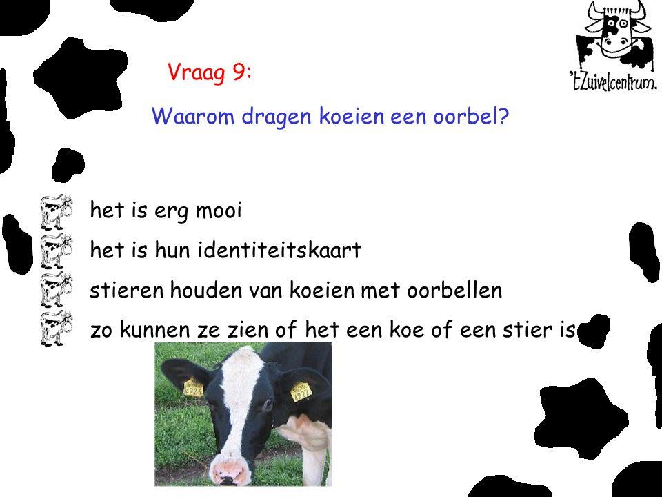 Vraag 9: Waarom dragen koeien een oorbel? het is erg mooi het is hun identiteitskaart stieren houden van koeien met oorbellen zo kunnen ze zien of het
