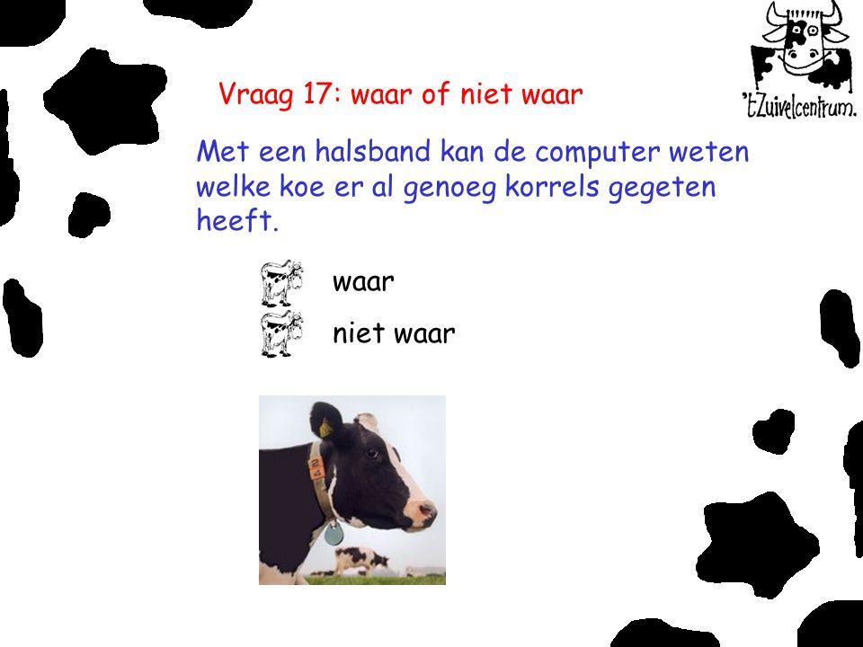 Vraag 17: waar of niet waar Met een halsband kan de computer weten welke koe er al genoeg korrels gegeten heeft. waar niet waar