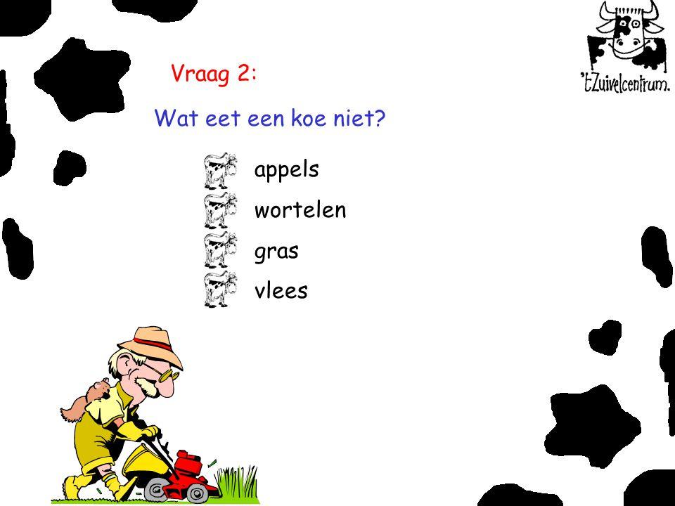 Vraag 2: Wat eet een koe niet? appels wortelen gras vlees