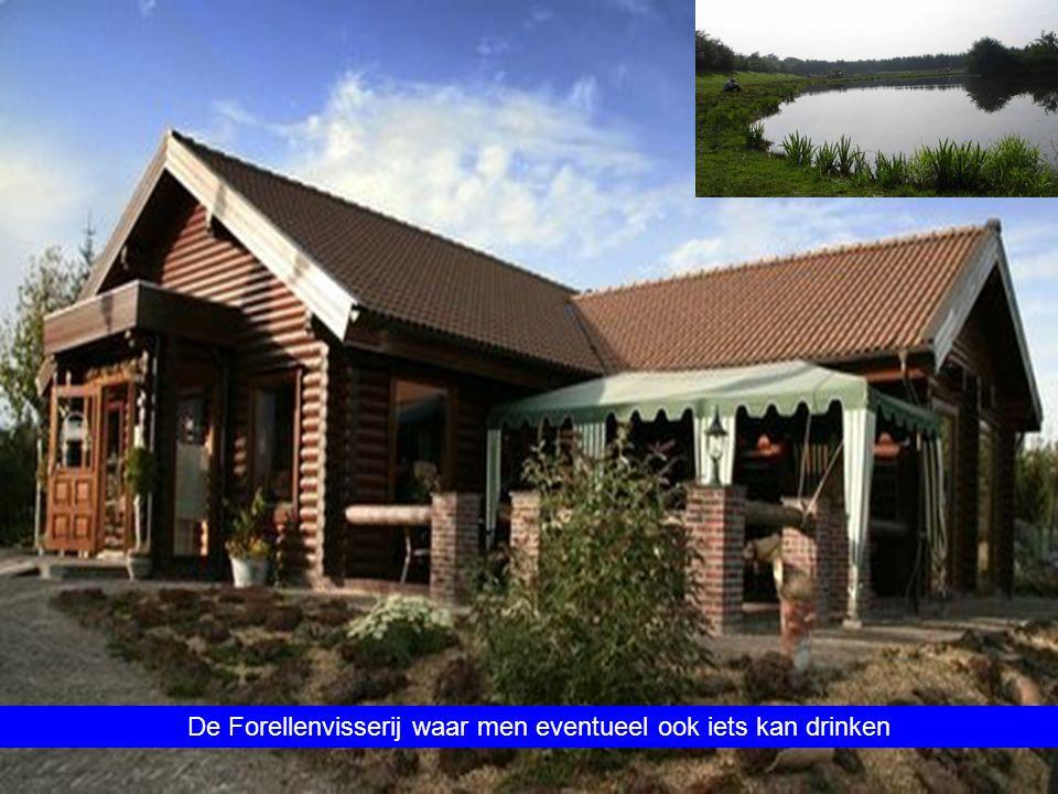 Fietsen door de mooie bossen bij Ter Apel richting Sellingen en het prachtige natuurreservaat ' Ter Borg '
